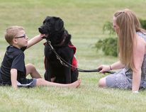 Owen Scott, an eight-year-old non-verbal autistic child, sits in the grass with his autism assistance guide dog, Rowdy, and his mother, Jane Houghton, at their family home near Glencoe. (CRAIG GLOVER, The London Free Press)