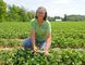 Sharon Judd of  Meadow Lynn Farms outside Simcoe is looking forward to a long season even though part of the crop was damaged by frost on the weekend. (JACOB ROBINSON Simcoe Reformer)