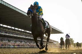 American Pharoah, with jockey Victor Espinoza aboard, became the first horse in 37 years to claim U.S. racing's Triple Crown. (LUCAS JACKSON/Reuters)