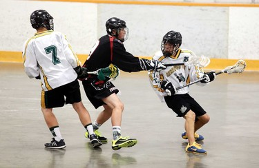 Sherwood Park Titan player (white) fight for the ball with the Edmonton Warriors during lacrosse playoffs at Coronation Arena in Edmonton, Alberta on Saturday, June 20, 2015. The Warriors won the game 6-3 and advances to the next round. Perry Mah/Edmonton Sun/Postmedia Network