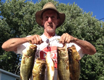 A decent morning of fishing on the Rideau River produced a nice string of largemouth bass last fall. The MNR is hosting its annual Family Fishing Week July 4-12 when no one needs a licence to fish.