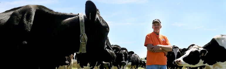 Patrick Herbert, a Florence area dairy farmer, has lost an entire herd of cows over a seven year period due to uncontrolled electricity flowing across his farm. Photo taken in Florence, Ont. on Tuesday June 16, 2015. (Diana Martin, The Daily News)