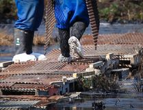 Workers wear protective clothing as the work continues to contain and clean up a pipeline spill at Nexen Energy's Long Lake facility near Fort McMurray, Alta., Wednesday, July 22, 2015.THE CANADIAN PRESS/Jeff McIntosh
