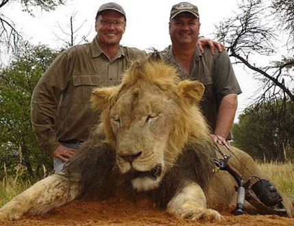 Walter James Palmer (left) poses with animals killed while on safari in this undated handout photo. Palmer, an avid hunter, is accused of illegally killing a well-known and protected lion, named Cecil, during a big game hunt in Zimbabwe. The killing has outraged animal conservationists and others worldw
