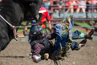 Will Purcell from Australia dismounts during Bulls For Breakfast at Big Valley Jamboree 2015 in Camrose, Alta. on Friday July 31, 2015. Ian Kucerak/Edmonton Sun/Postmedia Network