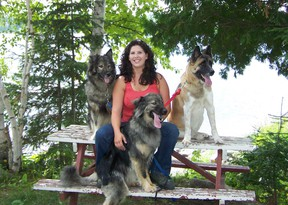 Photo supplied Nicole Charbonneau of Timmins hangs out with canine pals Guru, right, a husky/malamute; Lushia, left, an American Akita; and Jiggers, front, a Great Pyrenees mix. A graduate of plant ecology and land reclamation at Laurentian, Charbonneau advocates the use of Karelian dogs to harrass and herd black bears out of communities and work camps where they are causing problems.