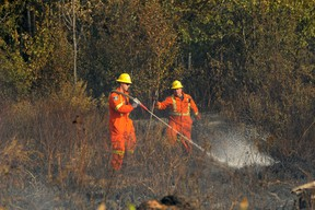 Forest fire update as of Aug. 17. File photo.