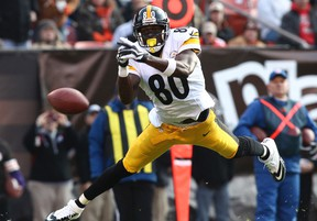 Former Steelers wide receiver Plaxico Burress has pleaded not guilty to wilful failure to pay state tax and issuing a bad check or electric funds transfer in New Jersey. (Aaron Josefczyk/Reuters/Files)