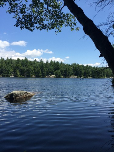 This July 21, 2015 photo shows Kilburn Pond through trees along the 5-mile Kilburn loop trail, in Pisgah State Park, in Winchester, N.H. The park's serene woodland trails are a nice contrast to the steep rocky climbs up nearby 3,165-foot Mount Monadnock. (AP Photo/Lindsey Tanner)