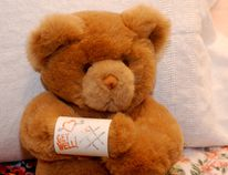 The QEII Hospital Foundation is looking for more donations of teddy bears and other stuffed animals for young patients at the hospital. File photo