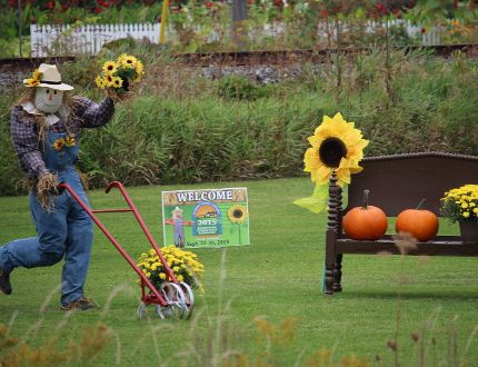 <p>The signs are everywhere, that the 2015 International Plowing Match and Rural Expo will soon be arriving in the Finch area, on Saturday August 29, 2015 in Cornwall, Ont. Todd Hambleton/Cornwall Standard-Freeholder/Postmedia Network