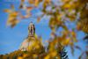 The roof of the Alberta Legislature building is seen from the grounds in Edmonton, Alta., on Thursday September 17, 2015. Fall colours have arrived in the Capital Region. Ian Kucerak/Edmonton Sun/Postmedia Network