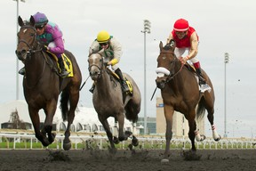 Jockey Luis Contreras guides Gamble's Ghost (left) to victory in the $150,000 Mazarine Stakes yesterday at Woodbine Racetrack. (Michael Burns/Photo)