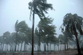"""Trees are blown by Typhoon Mujigae on a street in Zhanjiang, Guangdong province, on Oct. 4, 2015. A typhoon with winds up to 112 miles an hour lashed China's south coast on Sunday, killing at least four people and leaving a trail of destruction and flooding as authorities issued the highest """"red alert"""" emergency response. (REUTERS/Stringer)"""