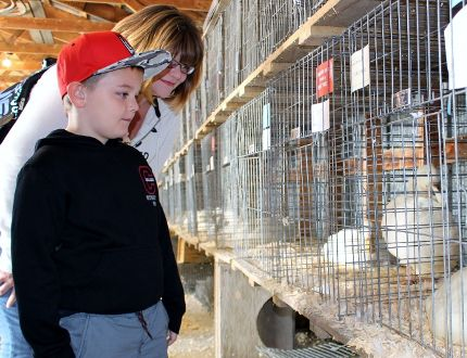 Gavin Hanna, six, and his mother Pam check out the poultry barn at the Brigden Fall Fair Sunday afternoon. The fair celebrated its 165th anniversary last weekend. Terry Bridge/Sarnia Observer/Postmedia Network