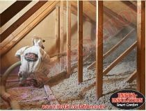 Let's Renovate - Leave insulation to the experts