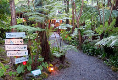 Volcano Village Lodge is set in a lush rainforest on the Big Island of Hawaii. (Jim Byers/Special to Postmedia Network)