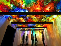 The Royal Ontario Museum will be displaying CHIHULY from June 25, 2016 to Jan. 2, 2017, courtesy of internationally-renowned Seattle artist Dale Chilhuly. HANDOUT/ SARNIA OBSERVER/ POSTMEDIA NETWORK