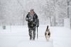 Al Frelk of Elgin, Ill., walks his dog, Shiba, 10, in Lords Park in Elgin on Saturday, Nov. 21, 2015.  The first significant snowstorm of the season blanketed some parts of the Midwest with more than a foot of snow and more was on the way Saturday, creating hazardous travel conditions and flight delays. (Stacey Wescott /Chicago Tribune via AP)