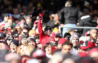 A Young Ottawa RedBlacks fan cheers from the north stands as as the Ottawa RedBlacks hosted the Hamilton Tiger-Cats in the CFL's East Division final on Sunday, Nov. 22, 2015. (Chris Hofley/Ottawa Sun)