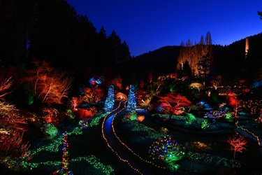 Victoria's world-renowned Butchart Gardens put on a magical light show during the holiday season. PHOTO COURTESY THE BUTCHART GARDENS