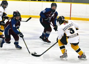 Taya Cornish (3) takes on three Lambeth players on her own during a Mitchell pee wee girls hockey game at the Mitchell Arena last Thursday, Dec. 17. The Meteors won a close one, 4-3. GALEN SIMMONS/MITCHELL ADVOCATE