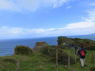 You'll find lovely hikes near the Pacific Ocean on the coast of south Chile. JIM BYERS/Special to Postmedia Network