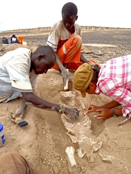 human skeleton excavation in Kenya