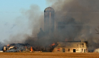 An early morning barn fire on Sunset Drive south of London killed about 85 cows on Tuesday February 1, 2016. Fifteen cows made it out of the building. Initial estimates peg the damage at about $1.5 million. (JOHN MINER, The London Free Press)