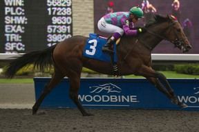 Ami's Flatter finished a disappointing eighth at last year's Queen's Plate, but is off to a hot start as a four-year-old this winter. (MICHAEL BURNS/PHOTO)