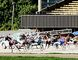 The Dresden Agricultural Society, which owns and operates the Dresden Raceway, plans on proceeding with this year's race season, despite a proposal that calls for the local horse track to close, along with tracks in Sarnia and Leamington. FILE PHOTO/Postmedia Network