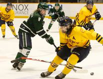 Nipissing Lakers forward Jade Gauthier (8) scored a pair of goals to lead her team over the Queen's Gaels in OUA women's hockey action at Memorial Gardens, Friday. Dave Dale/The Nugget