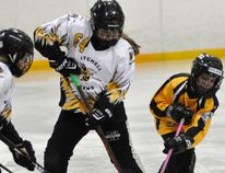 Paige Christie (64) of the Mitchell U10 ringette team corrals the ring at the edge of her own zone during WRRL regular season action against visiting Dorchester and their U9 team last Saturday, Feb. 6. ANDY BADER/MITCHELL ADVOCATE