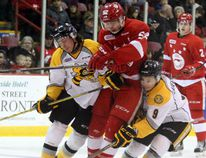 Soo Greyhounds fell 2-1 to the Sarnia Sting Wednesday night. JEFFREY OUGLER/SAULT STAR