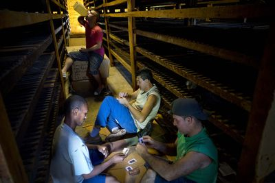 """In this March 1, 2016 photo, workers play cards during their lunch break between drying tobacco leaves at a warehouse in the province of Pinar del Rio, Cuba. The leaves are brought here to """"breath"""" after being previously dipped in ammonium and water, and dried for at least two months. Depending on the leaf, tobacco is left to """"breath"""" in a dark space from anywhere between two months to several years. (AP Photo/Ramon Espinosa)"""