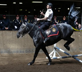 The Toronto Police Service Mounted Unit graduation ceremony takes place at the Horse Palace, Exhibition Place on Thursday April 7, 2016. The Toronto Police Service Mounted Unit is celebrating its 130th anniversary, making it the oldest unit in the history of policing in Toronto.Veronica Henri/Toronto Sun/Postmedia Network