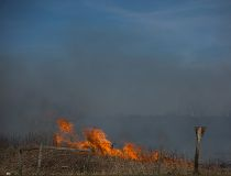 A brush fire in Maskwacis, Alberta