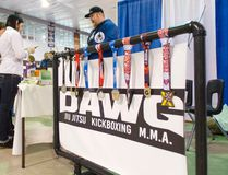 Mike Weichert, coach and owner of Dawg Jiu Jitsu, speaks to a expo attendee Sunday. (Darryl Coote/Reporter)