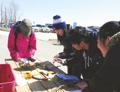 Students participate in Envirothon. The event is hosted by the Manitoba Forestry Association, and took place at Oak Hammock Marsh, April 21. (Matt Allen, Interlake Publishing, Postmedia Network)