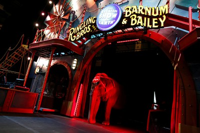 "An elephant stands in the arena entrance before Ringling Bros and Barnum & Bailey Circus' ""Circus Extreme"" show at the Mohegan Sun Arena at Casey Plaza in Wilkes-Barre, Pennsylvania, U.S., April 29, 2016. REUTERS/Andrew Kelly"