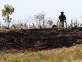 A burn ban is in place for all of Ottawa after firefighters were called to four separate brush and grass fires on Friday. File Photo