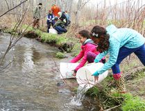 Mikayla Lloyd, 12, left, and her sister, Kaitlyn, 11, release brook trout into Junction Creek at Twin Forks Playground as part of the Junction Creek Stewardship Committee's Junction Creek Festival in Sudbury, Ont. on Saturday May 14, 2016. John Lappa/Sudbury Star/Postmedia Network
