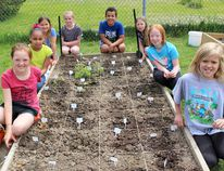 Queen Elizabeth II Public School students in Jenn Kranenburg's Grade 3/4 class display one of the vegetable gardens they have planted at the Chatham, Ont. school on Friday May 20, 2016. Pictured clockwise from left, are: Kaydence Kronemoore, Tiara Blackbird, Trinity Walker, Mirah Coll, Caiden Coll, Jayden Ogle, Chloe Tetrault and Hannah Doey. Ellwood Shreve/Chatham Daily News/Postmedia Network