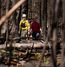 Firefighter come out of the bush after checking for hotspots at Gregoire Lake Provincial Park on May, 31 2016. (Greg Southam photo)