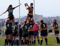 Banff Bear Kendra Pecsi receives the ball from a teammate during a line out on Monday, May 30, 2016 in the South Zone Central final in Calgary, Alta. The Bears lost 45-10 to the Springbank Phoenix. (Zach Laing/ Bow Valley Crag & Canyon/ Postmedia Network)