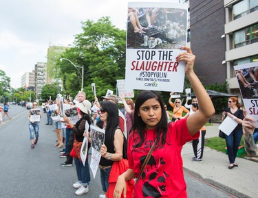 People demonstrate against the annual dog meat festival held in Yulin, China -  across the street from the Chinese Consulate in Toronto, Ont. on Saturday June 11, 2016. Ernest Doroszuk/Toronto Sun/Postmedia Network