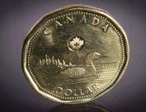 File photo of a loonie. (THE CANADIAN PRESS/Jonathan Hayward)