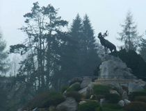 beaumont hamel