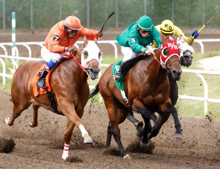 Trevor Simpson, left, on 'Spitz Zoom', Carl Hebert, middle, on 'Cr Eyesa Dyna', and Martin Ortiz, on 'Shawnee 109', race down a 350-yard stretch during the Horses at Evergreen Park's pari-mutuel program on Friday at Evergreen Park. Evergreen Park is hosting Derby Day, featuring the Alberta and Grande Prairie Derby, on July 31. Logan Clow/Daily Herald-Tribune
