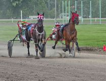 Winners Cory Manning and False Advertising (second from right) head down the home stretch in the Becky Wotan Pace in Miami. The first harness race weekend of the season started wet July 23, 2016, but all 14 races ran the next day. (Alexis Stockford/The Morden Times)